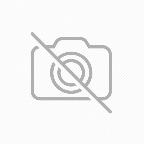 DELISSE - PERUVIAN MICROPULVERIZED TEA POWDER -  BAG X 500 GR