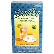 DELISSE EUCALYPTUSS - ANDEAN TEA WITH EUCALYPTUS AND MINT, BOX OF 100 TEA BAGS